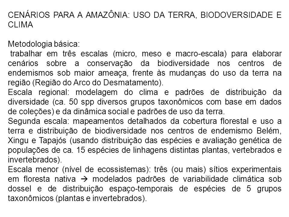 CENÁRIOS PARA A AMAZÔNIA: USO DA TERRA, BIODOVERSIDADE E CLIMA Metodologia básica: trabalhar em três escalas (micro, meso e macro-escala) para elabora