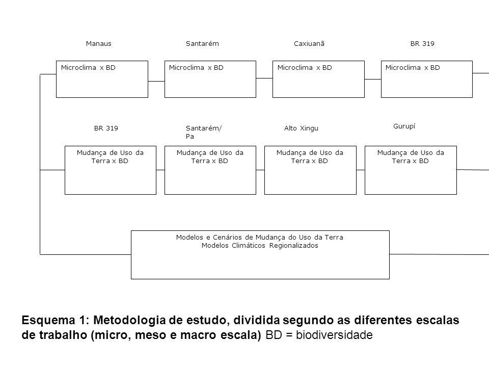 Microclima x BD Manaus Microclima x BD Santarém Microclima x BD Caxiuanã Microclima x BD BR 319 Mudança de Uso da Terra x BD BR 319 Mudança de Uso da Terra x BD Santarém/ Pa Mudança de Uso da Terra x BD Alto Xingu Gurupí Mudança de Uso da Terra x BD Modelos e Cenários de Mudança do Uso da Terra Modelos Climáticos Regionalizados Esquema 1: Metodologia de estudo, dividida segundo as diferentes escalas de trabalho (micro, meso e macro escala) BD = biodiversidade