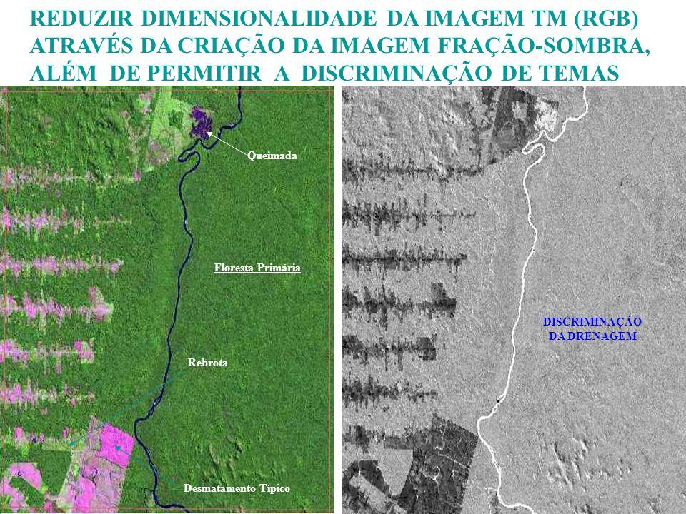 REDUZIR DIMENSIONALIDADE DA IMAGEM TM (RGB) ATRAVÉS DA CRIAÇÃO DA IMAGEM FRAÇÃO-SOMBRA, ALÉM DE PERMITIR A DISCRIMINAÇÃO DE TEMAS Desmatamento Típico
