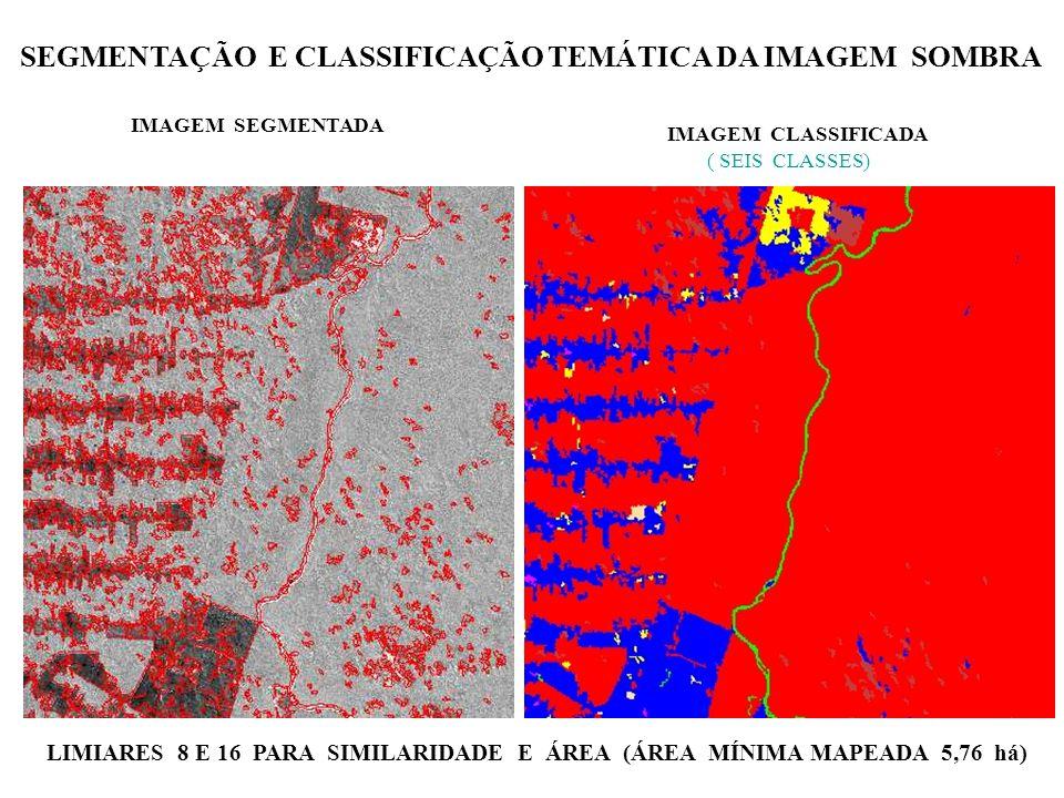 SEGMENTAÇÃO E CLASSIFICAÇÃO TEMÁTICA DA IMAGEM SOMBRA LIMIARES 8 E 16 PARA SIMILARIDADE E ÁREA (ÁREA MÍNIMA MAPEADA 5,76 há) IMAGEM SEGMENTADA IMAGEM CLASSIFICADA ( SEIS CLASSES)
