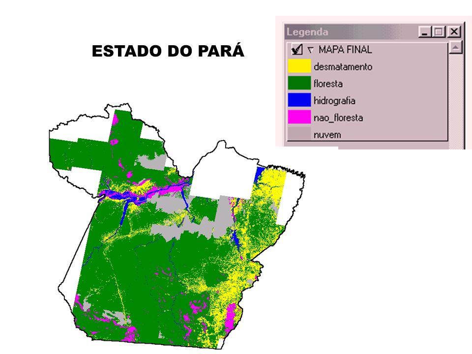 ESTADO DO PARÁ
