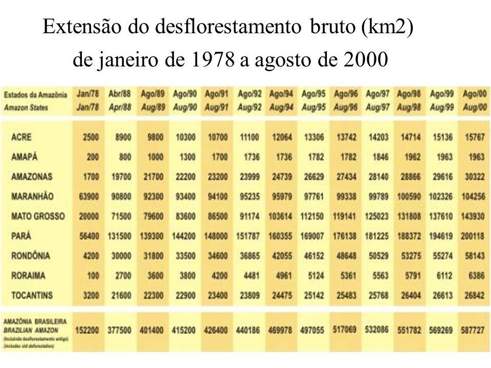 Extensão do desflorestamento bruto (km2) de janeiro de 1978 a agosto de 2000