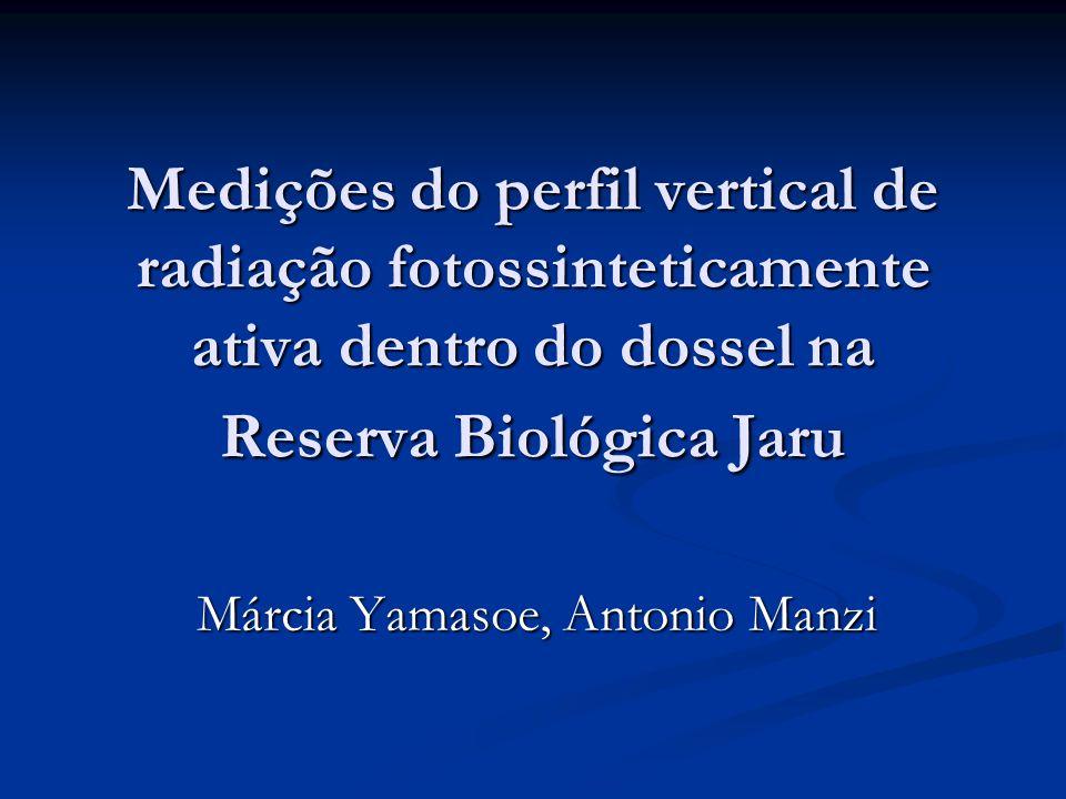 Medições do perfil vertical de radiação fotossinteticamente ativa dentro do dossel na Reserva Biológica Jaru Márcia Yamasoe, Antonio Manzi