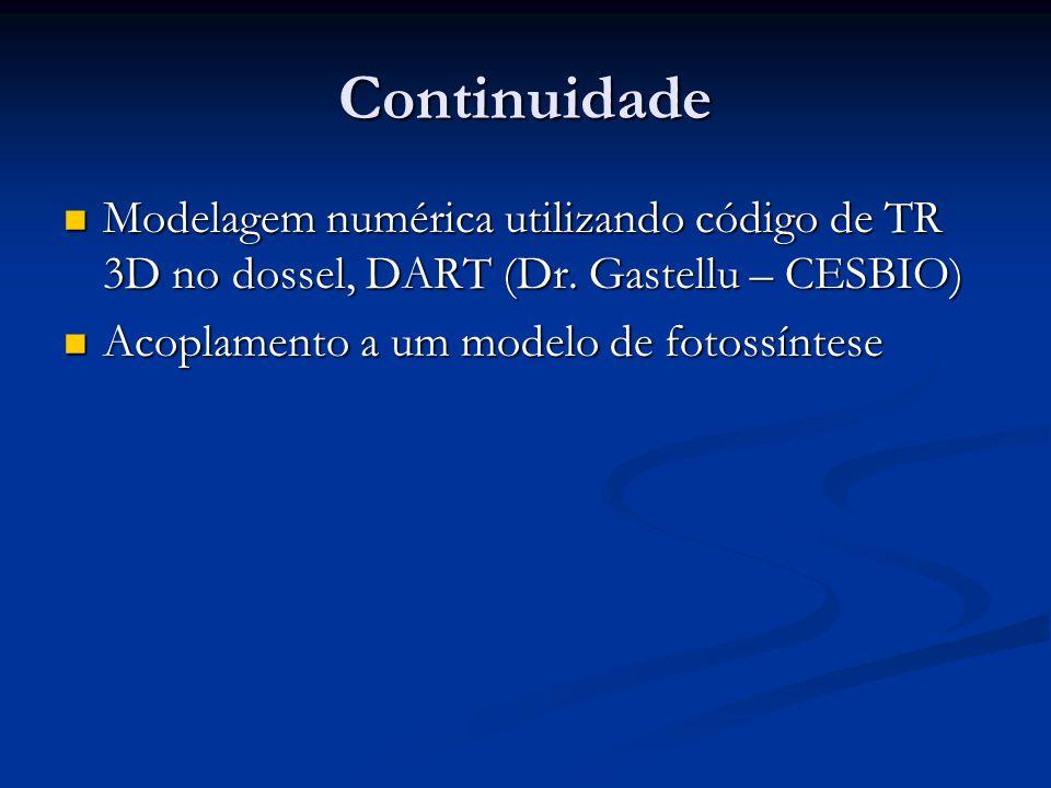 Continuidade Modelagem numérica utilizando código de TR 3D no dossel, DART (Dr.