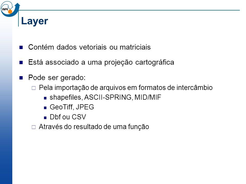 Layer Contém dados vetoriais ou matriciais Está associado a uma projeção cartográfica Pode ser gerado: Pela importação de arquivos em formatos de inte