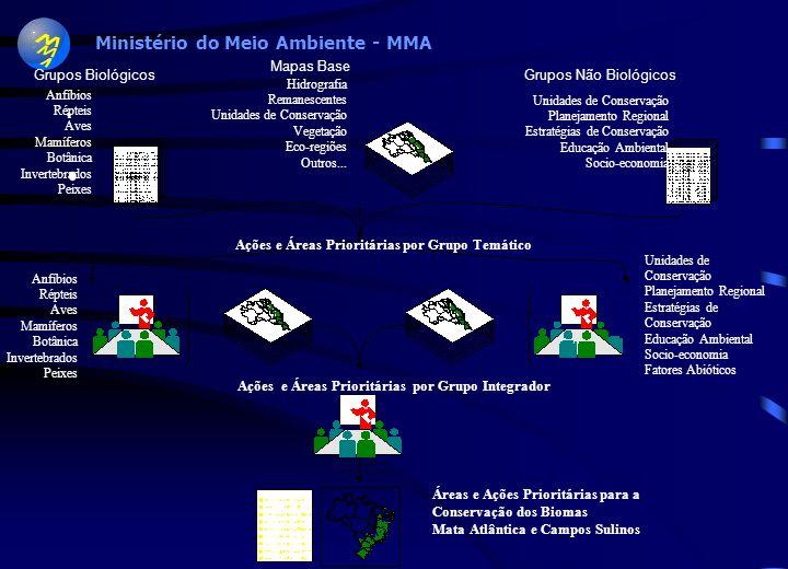 Ministério do Meio Ambiente - MMA Mata Atlântica e Campos Sulinos Cerrado e Pantanal Zona Costeira e Marinha Caatinga Amazônia Ministério do Meio Ambi