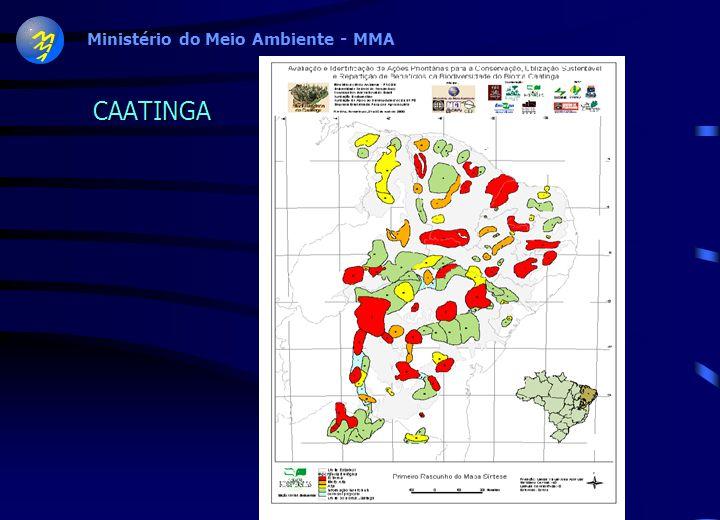 Workshop Cerrado e Pantanal Produtos –Mapa com áreas prioritárias –Sumário Executivo –Relatório Técnico