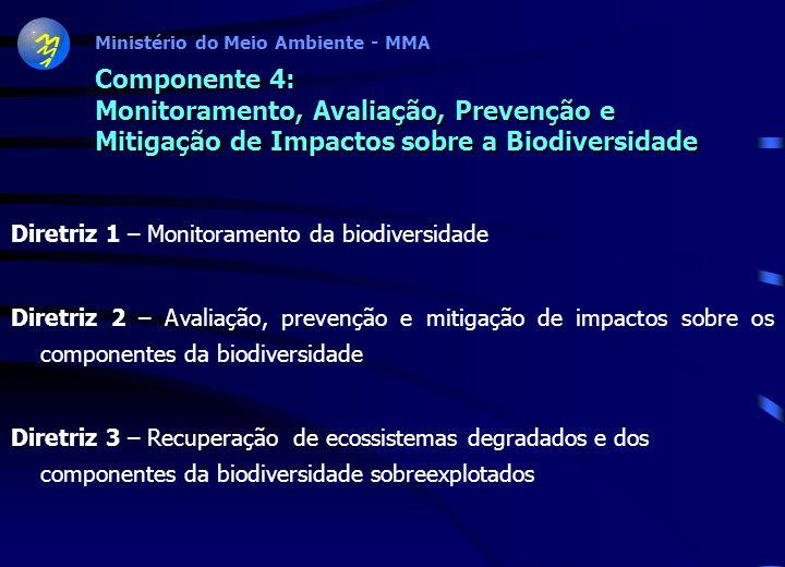 Ministério do Meio Ambiente - MMA Componente 3: Utilização Sustentável dos Componentes da Biodiversidade Diretriz 1 - Gestão da biotecnologia e da bio