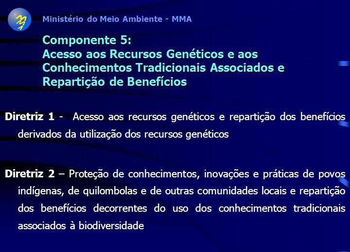 Ministério do Meio Ambiente - MMA Componente 4: Monitoramento, Avaliação, Prevenção e Mitigação de Impactos sobre a Biodiversidade Diretriz 1 – Monito