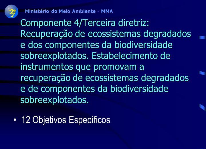 Ministério do Meio Ambiente - MMA Componente 7: Fortalecimento Jurídico Institucional para a Gestão da Biodiversidade Diretriz 1 - Fortalecimento da i