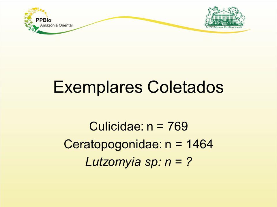 Exemplares Coletados Culicidae: n = 769 Ceratopogonidae: n = 1464 Lutzomyia sp: n = ?
