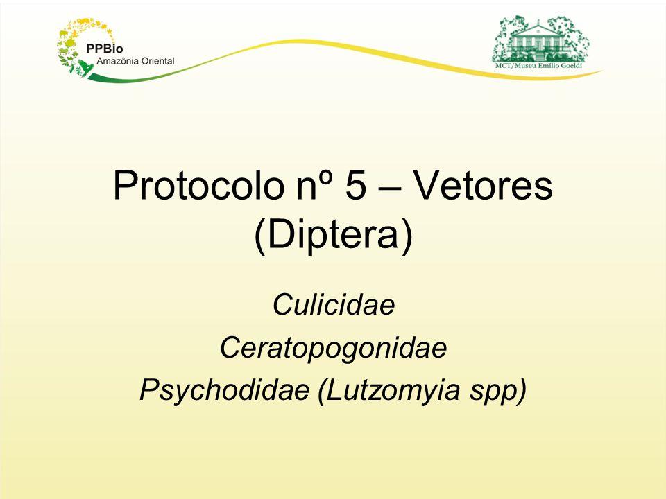 Protocolo nº 5 – Vetores (Diptera) Culicidae Ceratopogonidae Psychodidae (Lutzomyia spp)