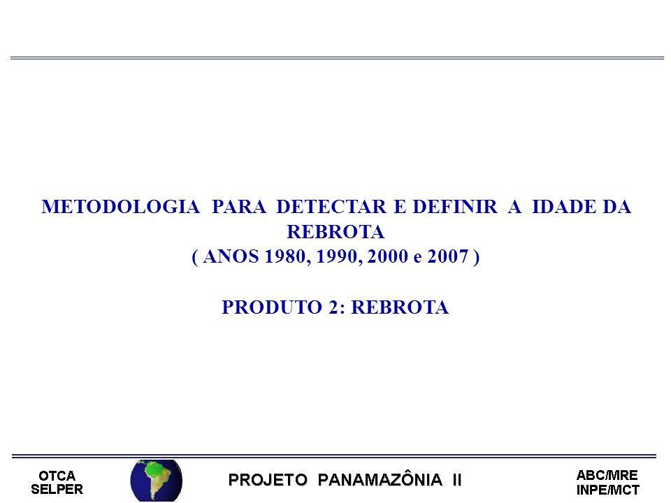 METODOLOGIA PARA DETECTAR E DEFINIR A IDADE DA REBROTA ( ANOS 1980, 1990, 2000 e 2007 ) PRODUTO 2: REBROTA