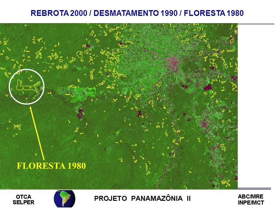 REBROTA 2000 / DESMATAMENTO 1990 / FLORESTA 1980 FLORESTA 1980
