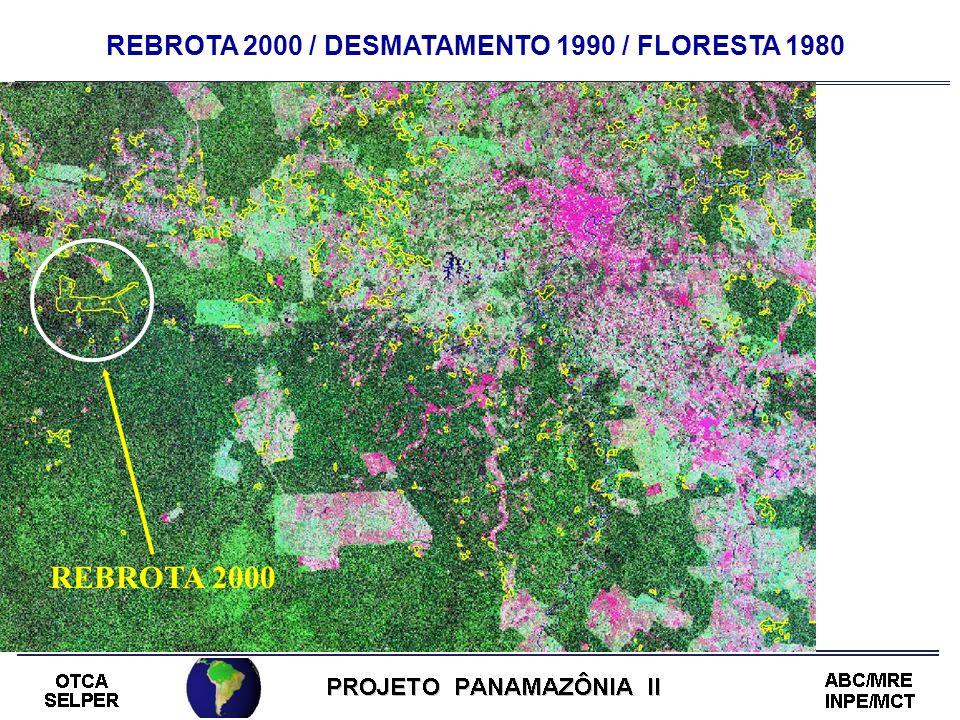 REBROTA 2000 / DESMATAMENTO 1990 / FLORESTA 1980 REBROTA 2000