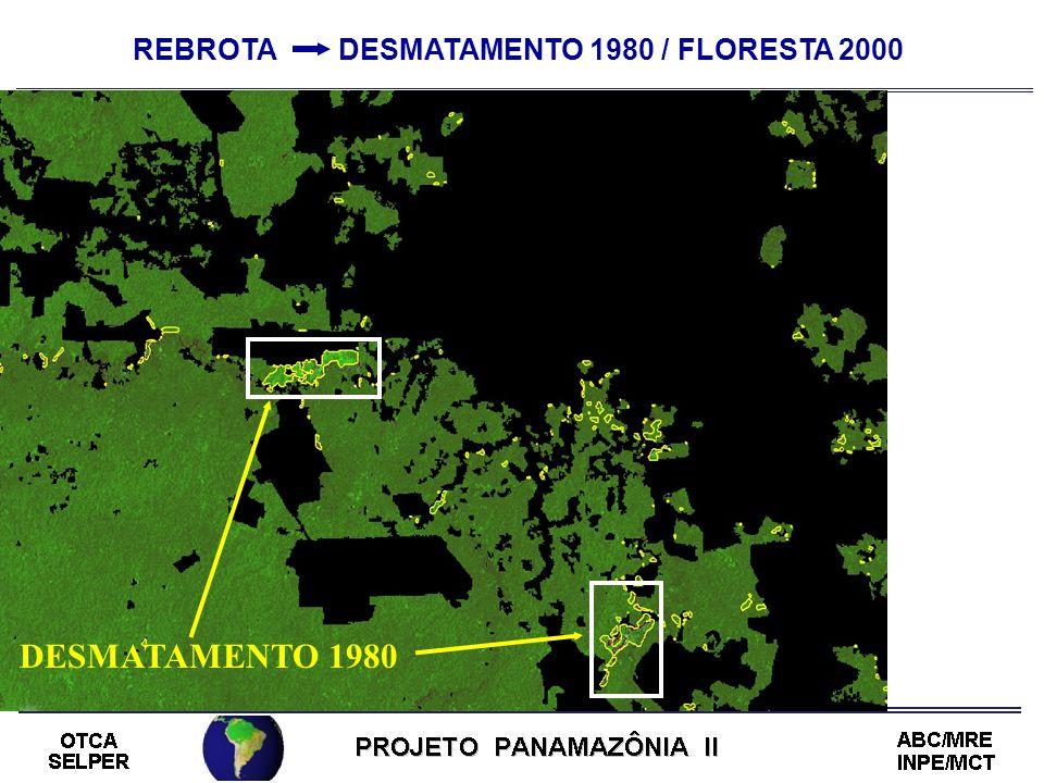 REBROTA DESMATAMENTO 1980 / FLORESTA 2000 DESMATAMENTO 1980