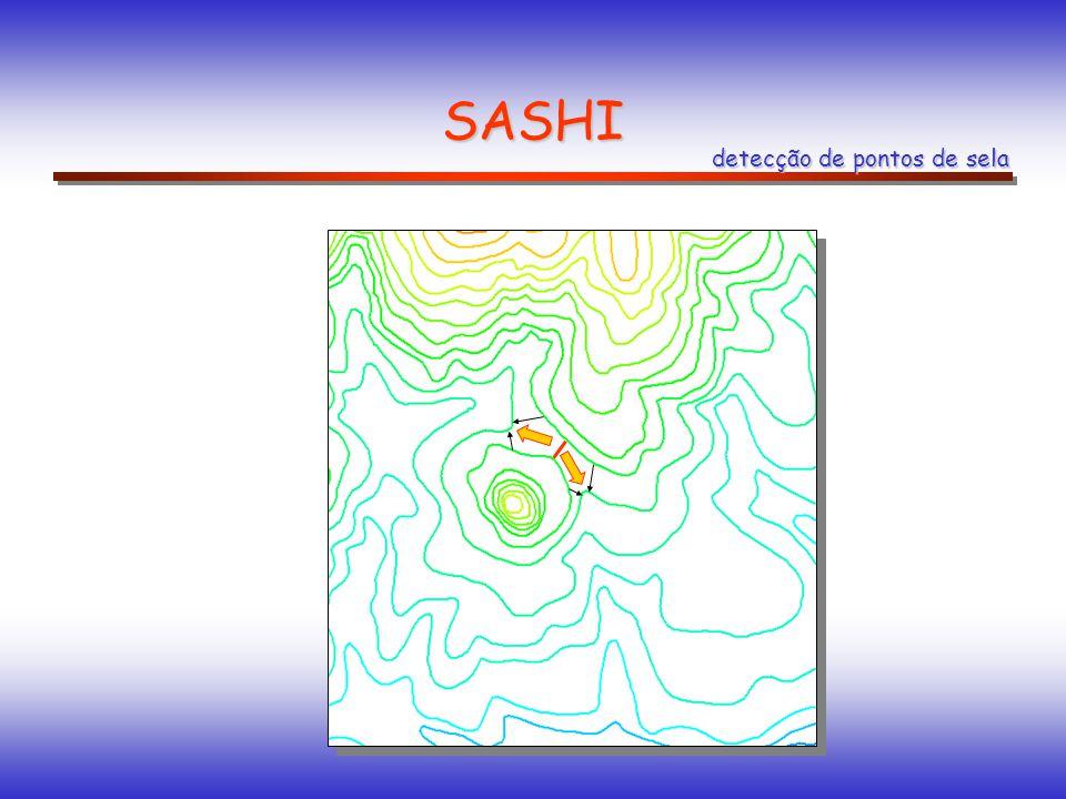 SASHI detecção de pontos de sela