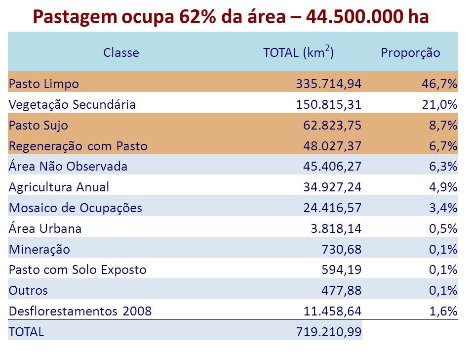 ClasseTOTAL (km 2 )Proporção Pasto Limpo 335.714,9446,7% Vegetação Secundária 150.815,3121,0% Pasto Sujo 62.823,758,7% Regeneração com Pasto 48.027,376,7% Área Não Observada 45.406,276,3% Agricultura Anual 34.927,244,9% Mosaico de Ocupações 24.416,573,4% Área Urbana 3.818,140,5% Mineração 730,680,1% Pasto com Solo Exposto 594,190,1% Outros 477,880,1% Desflorestamentos 2008 11.458,641,6% TOTAL 719.210,99 Pastagem ocupa 62% da área – 44.500.000 ha
