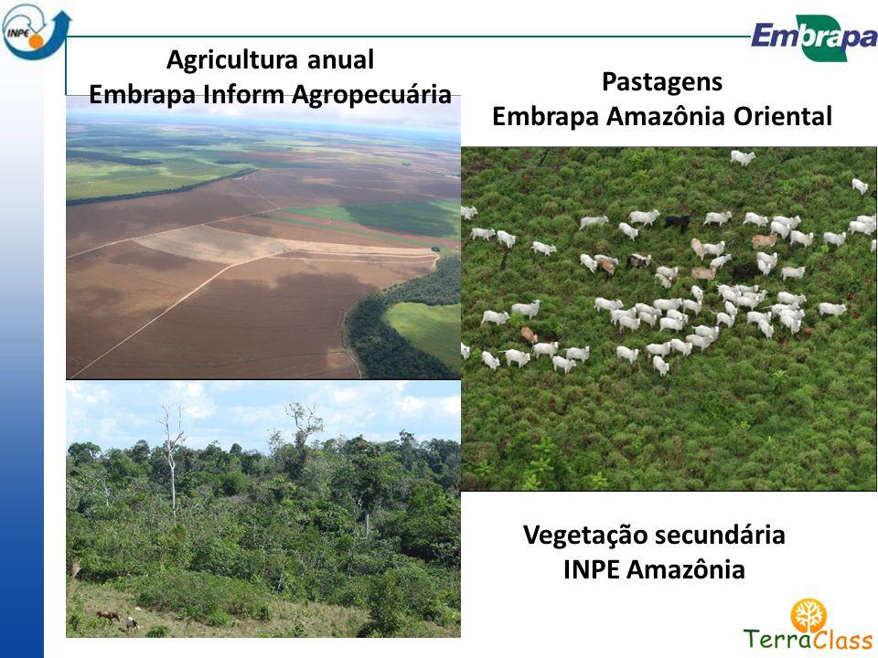 Agricultura anual