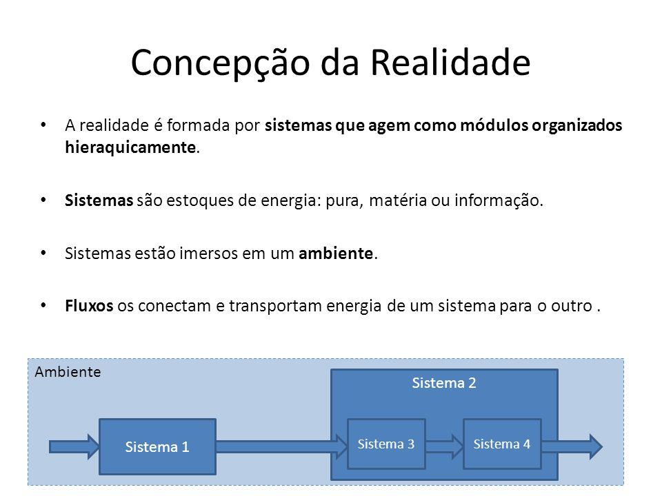 Ambiente Concepção da Realidade A realidade é formada por sistemas que agem como módulos organizados hieraquicamente. Sistemas são estoques de energia