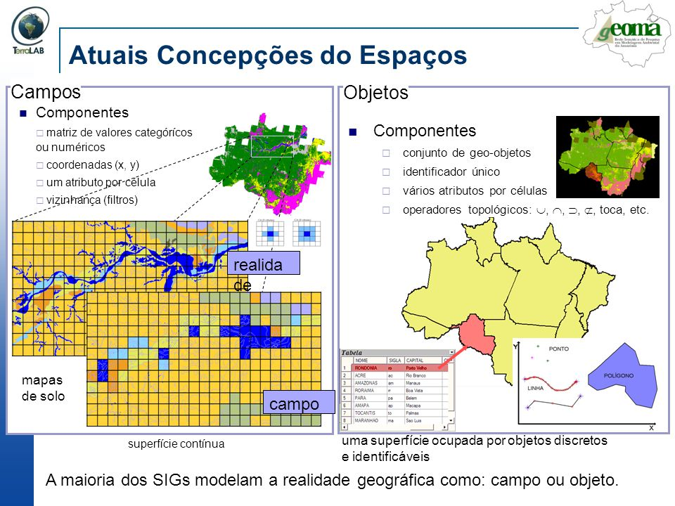 Rondônia: cada assentamento do INCRA é modelado como uma Escala Fonte: Isabel Escada (INPE)
