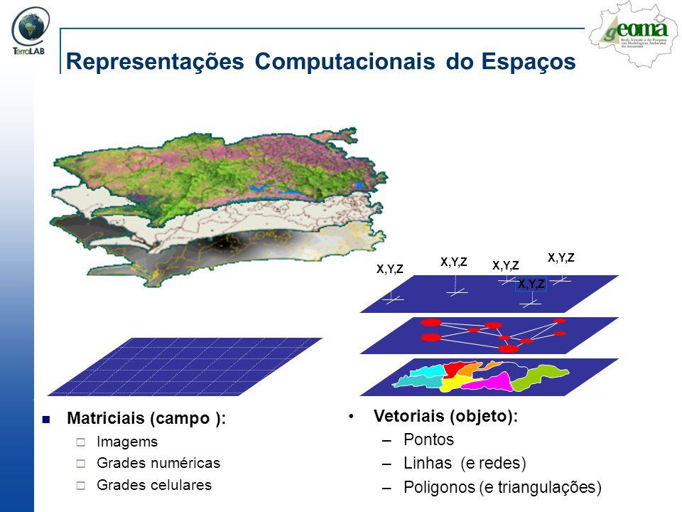 Representações Computacionais do Espaços Matriciais (campo ): Imagems Grades numéricas Grades celulares Vetoriais (objeto): –Pontos –Linhas (e redes)