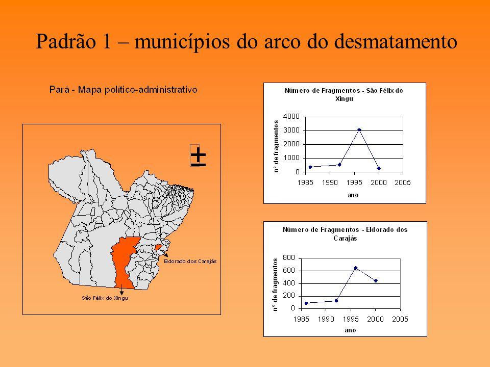 V. Resultados A análise do número de fragmentos por município indicou dois padrões de fragmentação: - Municípios da fronteira consolidada - Outros mun