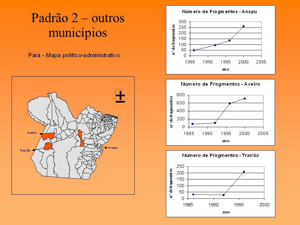 Padrão 1 – municípios do arco do desmatamento