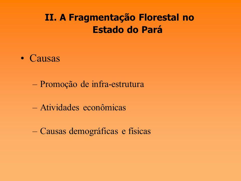 I. Fragmentação Florestal Impactos do processo de desmatamento e impactos sobre a biodiversidade - Definição: processo de divisão de um habitat contín