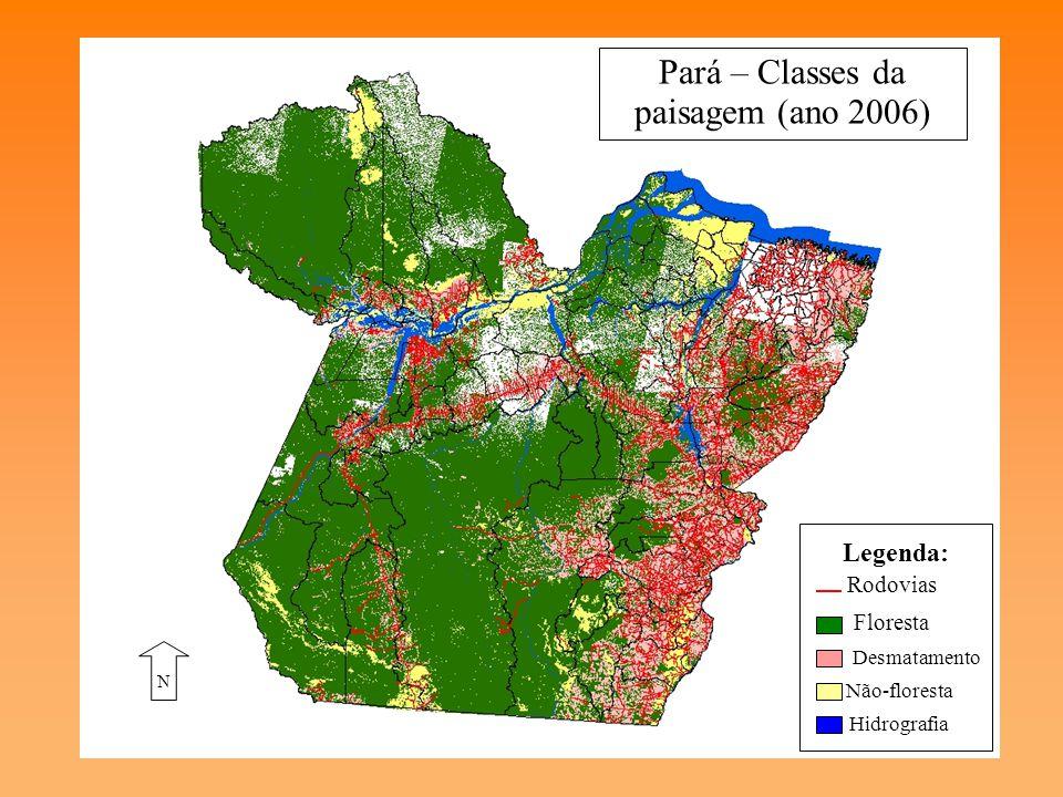 II. A Fragmentação Florestal no Estado do Pará Causas –Promoção de infra-estrutura –Atividades econômicas –Causas demográficas e físicas