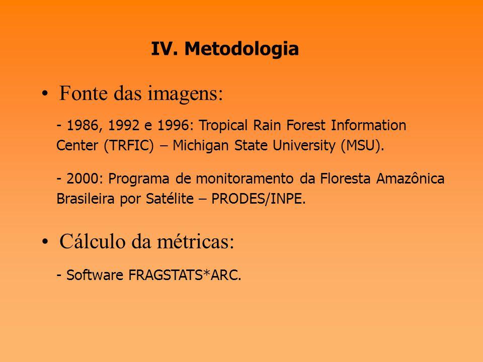III. As métricas da paisagem - As métricas da paisagem podem ser úteis como indicadores do processo de fragmentação florestal e como indicadoras da su