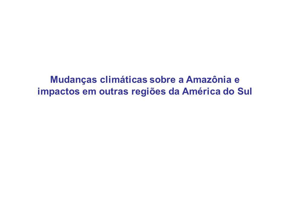 Northeast Trades Mudanças climáticas sobre a Amazônia e impactos em outras regiões da América do Sul
