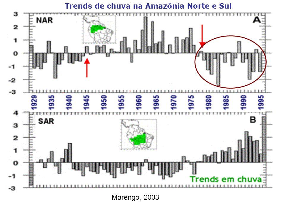 Trends de chuva na Amazônia Norte e Sul Marengo, 2003