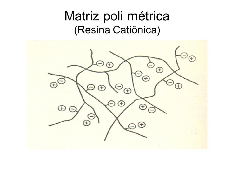 Matriz poli métrica (Resina Catiônica)