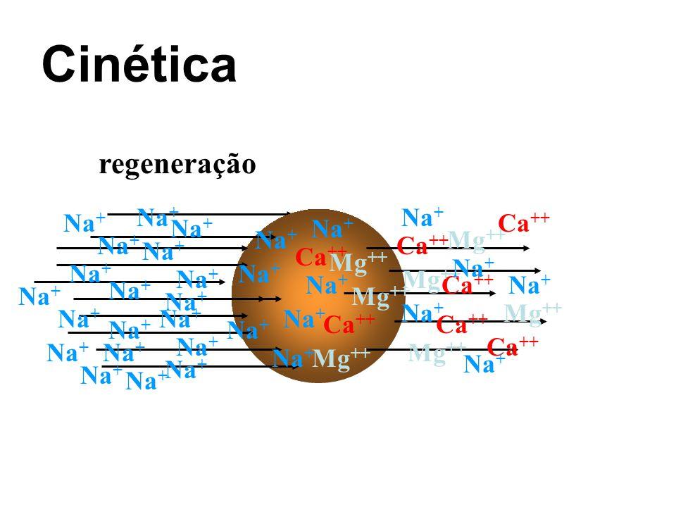 Cinética regeneração Na + Ca ++ Mg ++ Na +