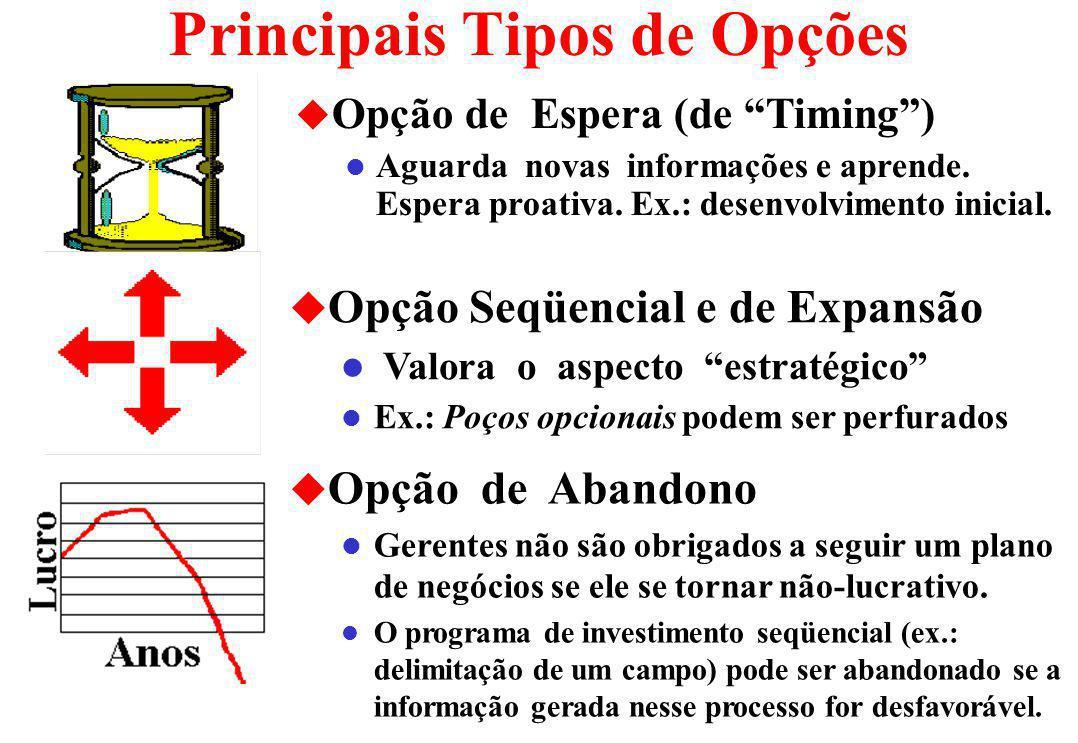 Principais Tipos de Opções u Opção de Espera (de Timing) l Aguarda novas informações e aprende.