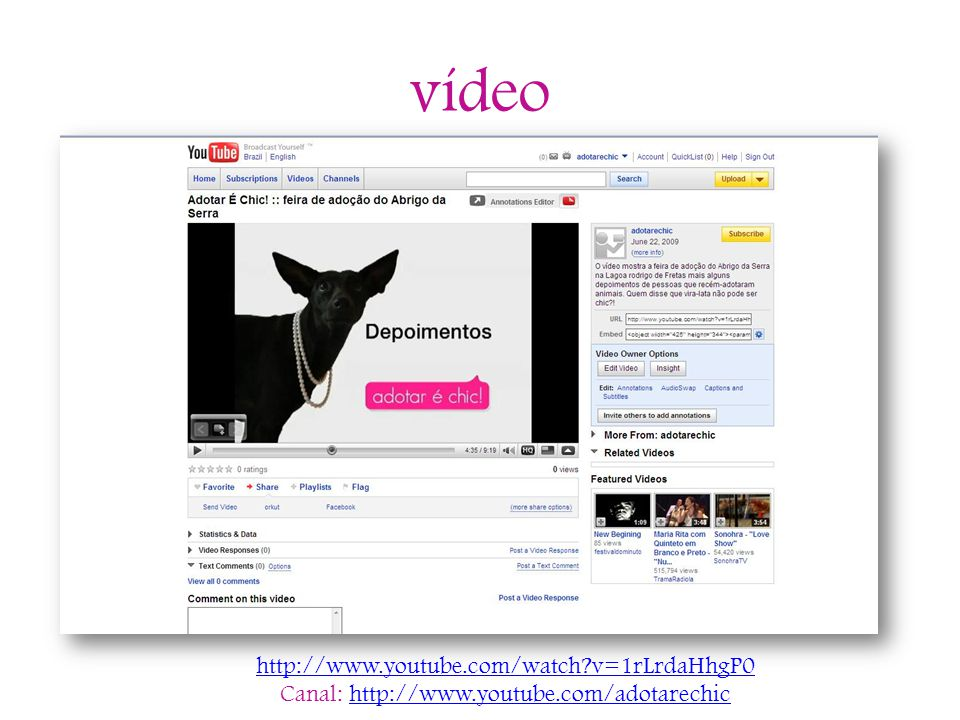 vídeo http://www.youtube.com/watch?v=1rLrdaHhgP0 Canal: http://www.youtube.com/adotarechichttp://www.youtube.com/adotarechic