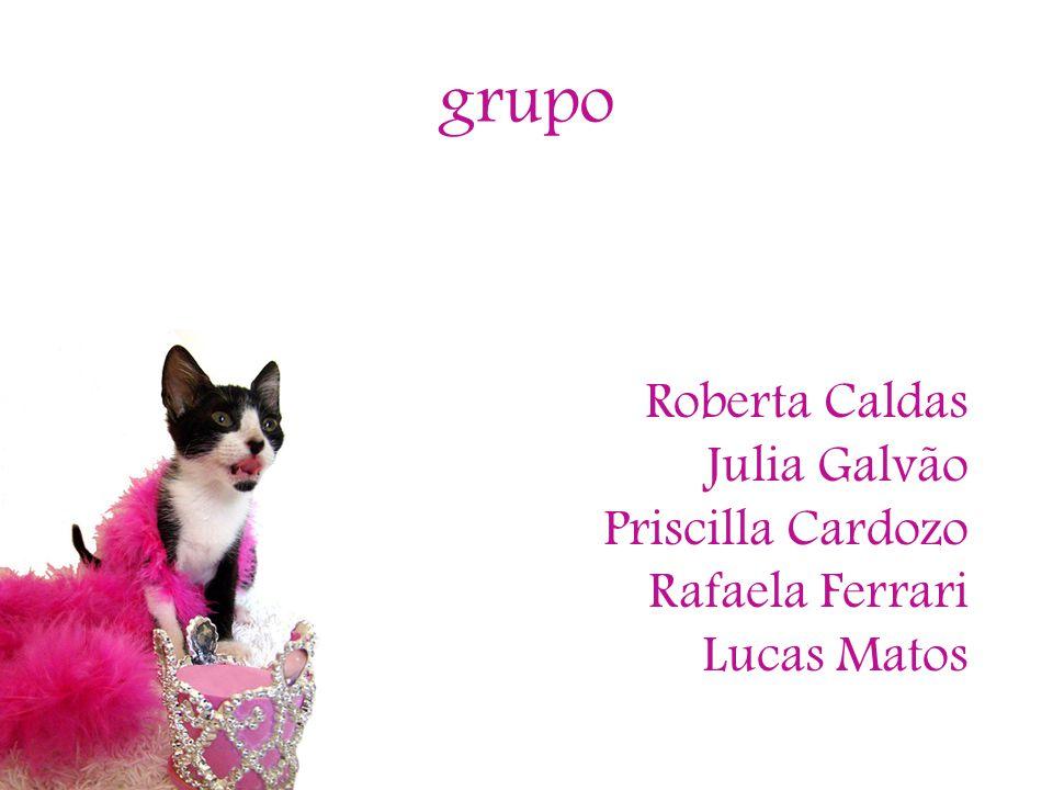 grupo Roberta Caldas Julia Galvão Priscilla Cardozo Rafaela Ferrari Lucas Matos
