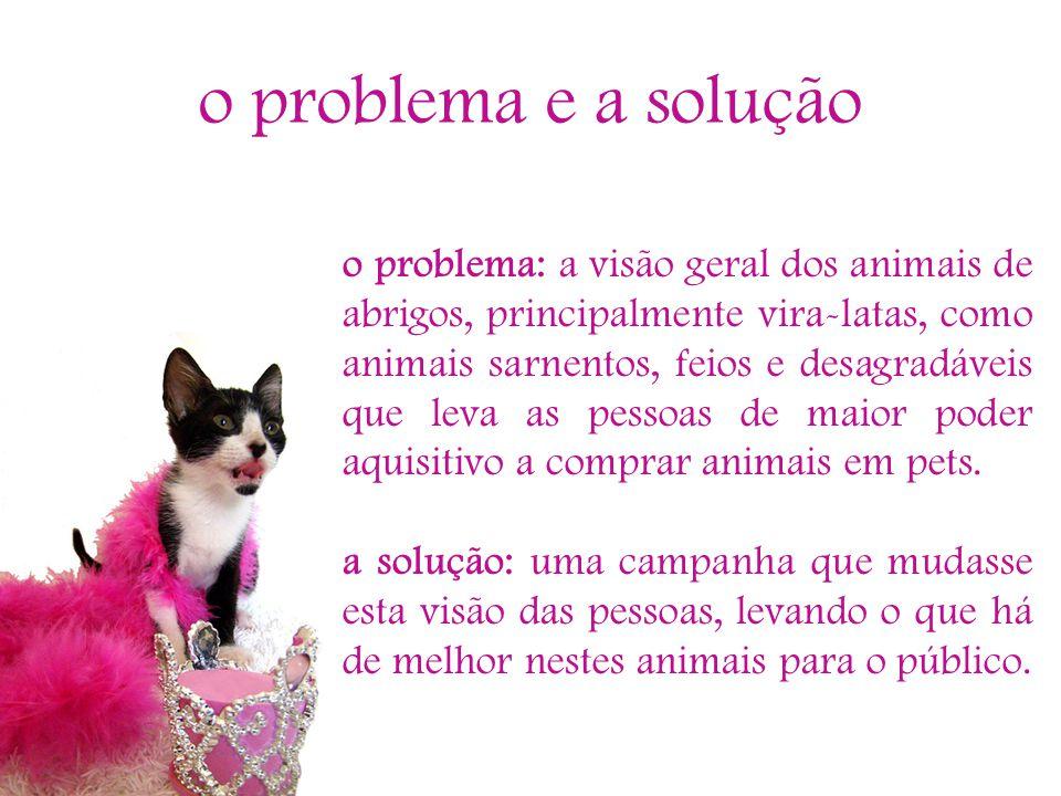 o problema e a solução o problema: a visão geral dos animais de abrigos, principalmente vira-latas, como animais sarnentos, feios e desagradáveis que