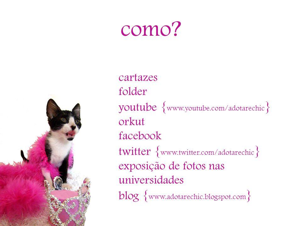 como? cartazes folder youtube { www.youtube.com/adotarechic } orkut facebook twitter { www.twitter.com/adotarechic } exposição de fotos nas universida