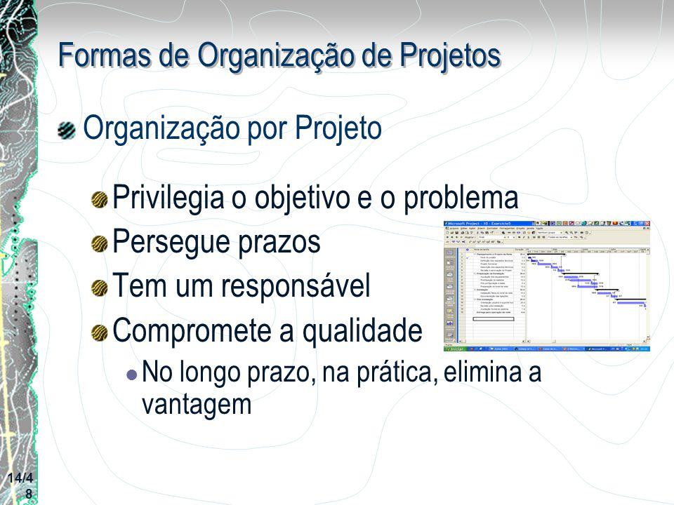 Formas de Organização de Projetos Organização por Projeto Privilegia o objetivo e o problema Persegue prazos Tem um responsável Compromete a qualidade