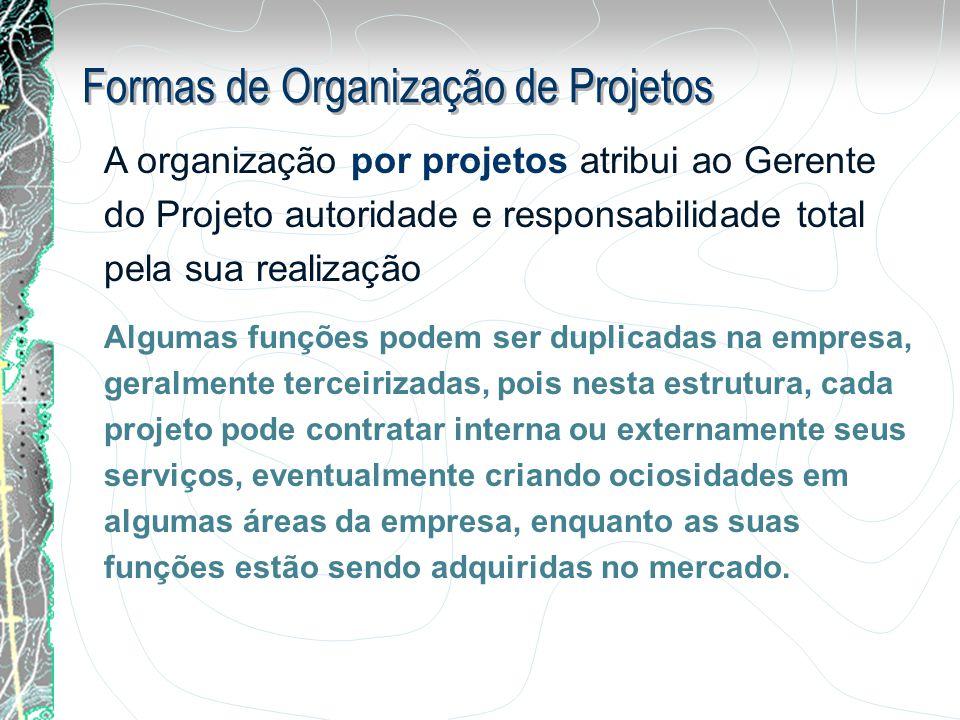 A organização por projetos atribui ao Gerente do Projeto autoridade e responsabilidade total pela sua realização Algumas funções podem ser duplicadas