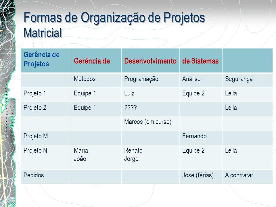 Formas de Organização de Projetos Matricial Gerência de Projetos Gerência deDesenvolvimentode Sistemas MétodosProgramaçãoAnáliseSegurança Projeto 1Equ