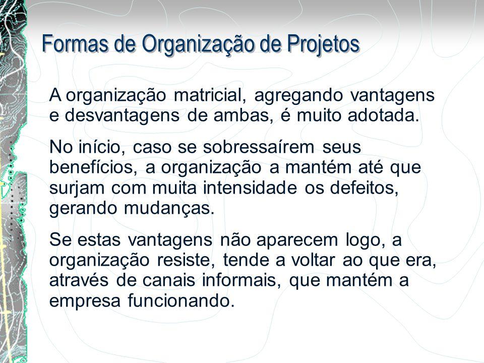 Formas de Organização de Projetos A organização matricial, agregando vantagens e desvantagens de ambas, é muito adotada. No início, caso se sobressaír
