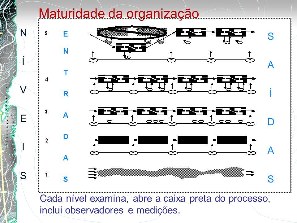 5 / 25 Cada nível examina, abre a caixa preta do processo, inclui observadores e medições. NÍVEISNÍVEIS ENTRADASENTRADAS SAÍDASSAÍDAS Maturidade da or