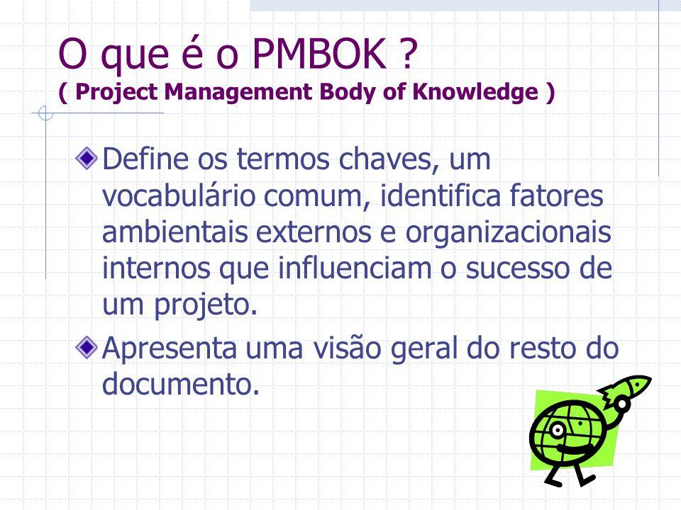 Define os termos chaves, um vocabulário comum, identifica fatores ambientais externos e organizacionais internos que influenciam o sucesso de um proje