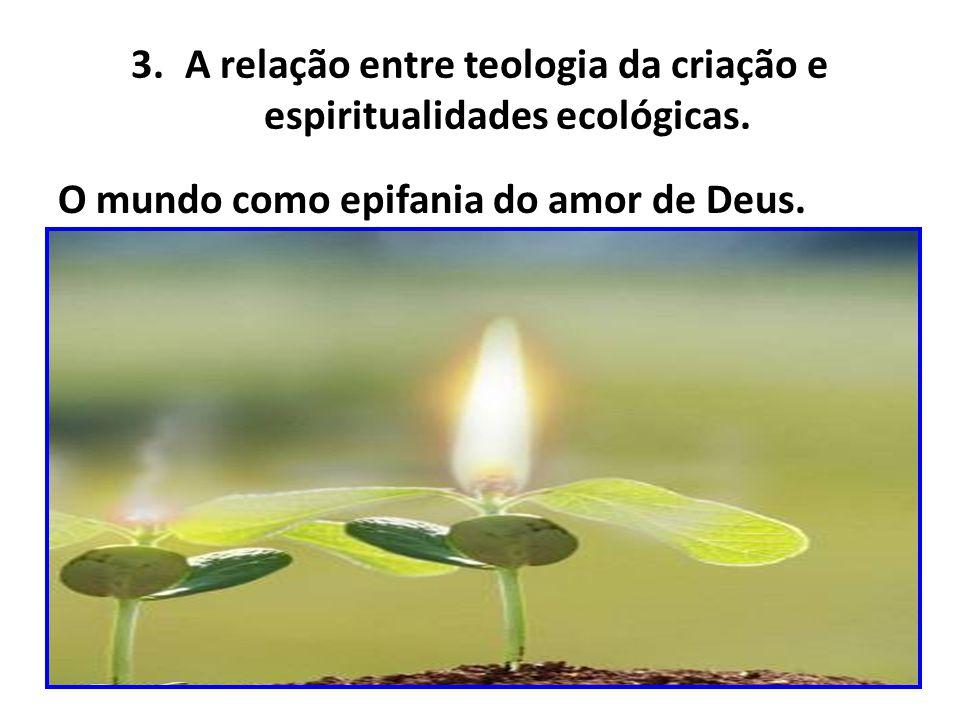 3.A relação entre teologia da criação e espiritualidades ecológicas.