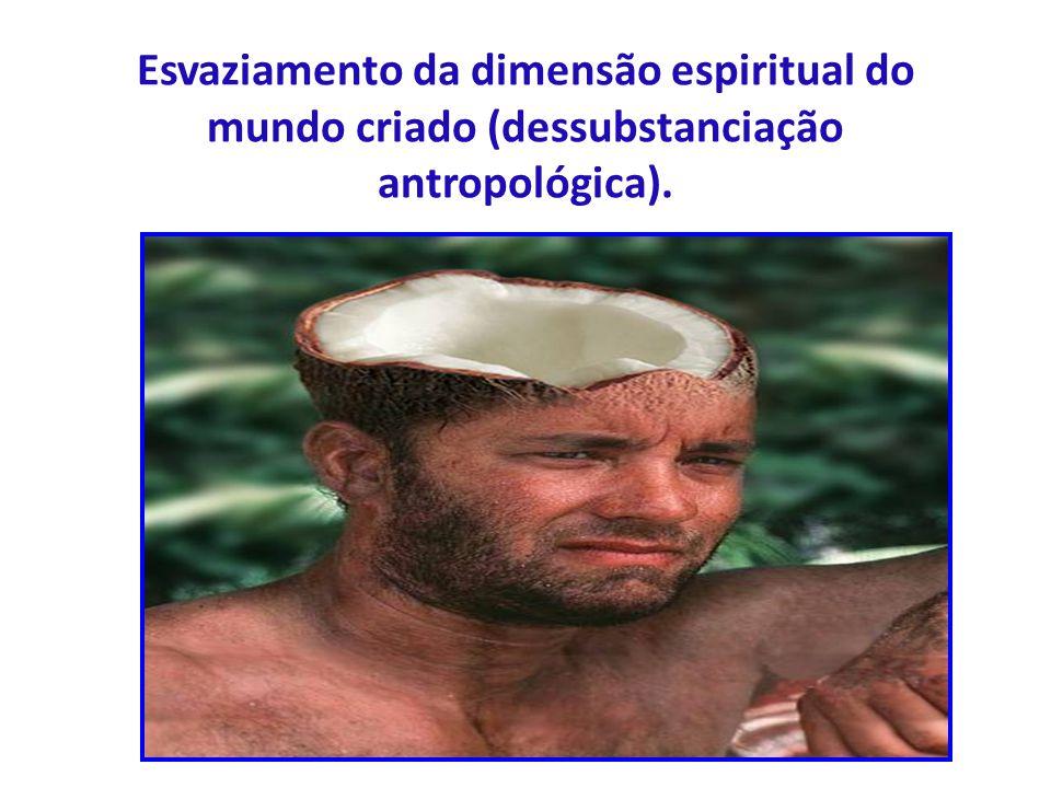 Esvaziamento da dimensão espiritual do mundo criado (dessubstanciação antropológica).