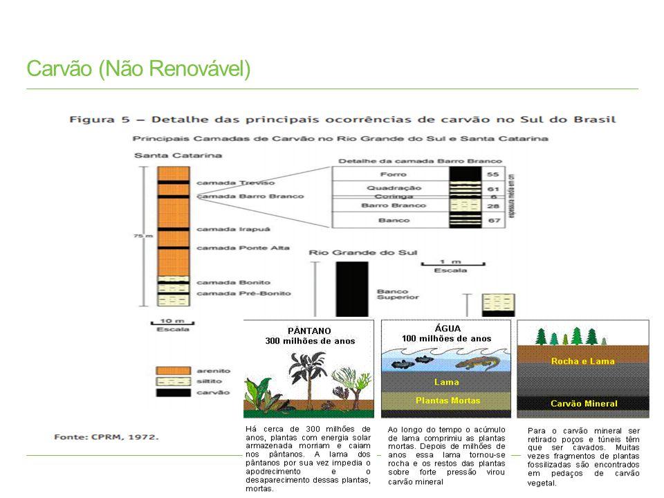 Carvão O carvão mineral, dependendo do tempo decorrido do processo de fossilização, pode ser: - do tipo turfa...........................