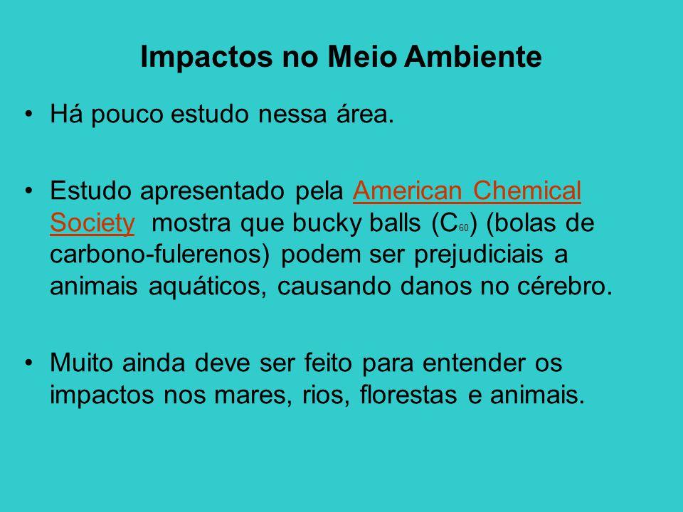 Impactos no Meio Ambiente Há pouco estudo nessa área. Estudo apresentado pela American Chemical Society mostra que bucky balls (C 60 ) (bolas de carbo